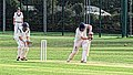 Dunmow CC v Brockley CC at Great Dunmow, Essex, England 44.jpg