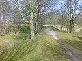 Ebeltoftbanen92LyngbyvejTrustrup.jpg