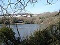 Ecclesbourne Reservoir Hastings East Sussex - geograph.org.uk - 141159.jpg