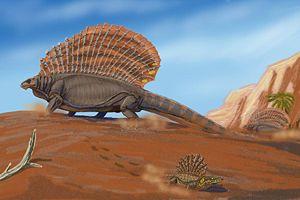 Permian - Image: Edaphosaurus DB