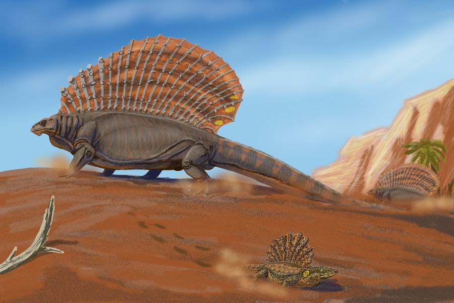 EdaphosaurusDB