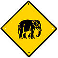 Elephant crossing.jpg