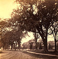 Elm Street near Prospect Street 1880s.jpg