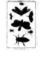 Encyclopedie volume 5-133.png