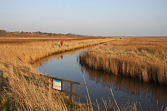 Suffolk Coast National Nature Reserve - Marshes south of Walberswick