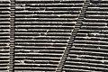Epidauro 4.jpg