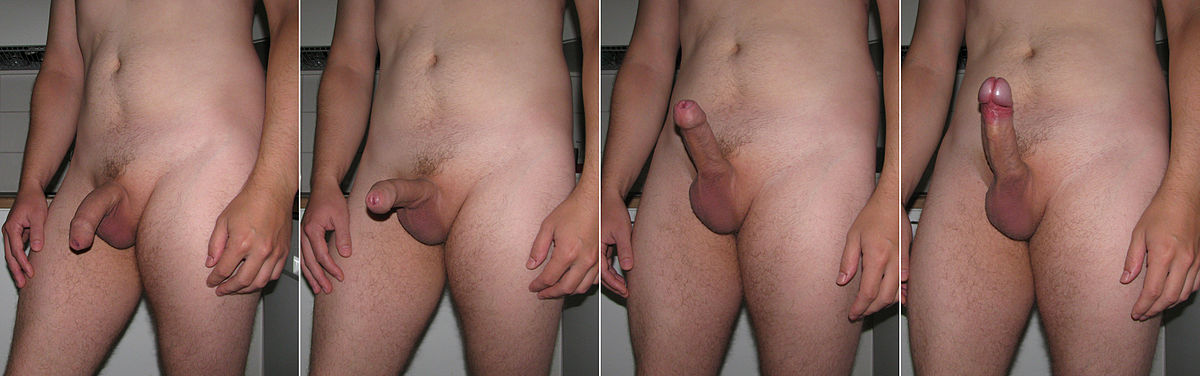 фото эрэкцыи у мужчин порой горла