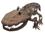 Eryops skeleton.png
