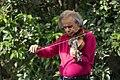 Eskandar Abadi Geige.jpg