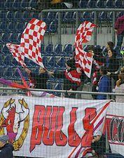 FC Red Bull Salzburg gegen SCR Altach (März 2015) 32.JPG