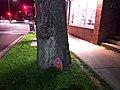 Fairy Door (24278110848).jpg
