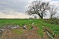 Farmland near Old Dalby - geograph.org.uk - 159602.jpg