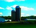 Farrell Farm l - panoramio.jpg