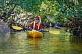 Feb. Kayak Paddle (26) (16582437321).jpg