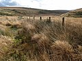 Fence by the West Dart - geograph.org.uk - 1591567.jpg