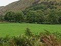 Field by Glan-yr-eryr - geograph.org.uk - 2081121.jpg