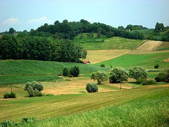 Landscape in Croatia(Hrvatsko Zagorje)