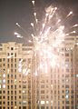 Fireworks - Chinese New Year (4355697964).jpg
