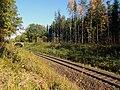 Flächennaturdenkmal FNDDD225101 Bahndamm Wallroda.jpg