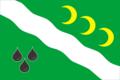Flag of Nizhnesypovskoe (Perm krai).png