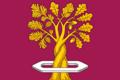 Flag of Tulinovsky (Tambov oblast).png
