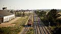 Flickr - nmorao - Locomotiva 1429, Riachos, 2009.05.06.jpg