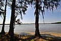 Florala State Park - Lake Jackson.JPG