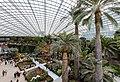 Flower Dome (I).jpg
