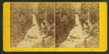 Flume, at the time of the flood, Oct. 1869. Franconia, N.H, by H. S. Fifield 2.png
