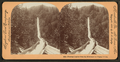 Fluming lumber from the mountains in Oregon, from Robert N. Dennis collection of stereoscopic views.png