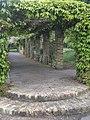 Foliage-covered walkway, Ruskin Park SE5 - geograph.org.uk - 1312719.jpg