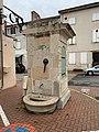 Fontaine Place Marché - Pont-de-Veyle (FR01) - 2020-12-03 - 1.jpg