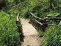 Footbridge in Brockhill Country Park - geograph.org.uk - 1274574.jpg