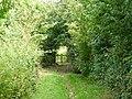 Footpath at Hooley, Surrey - geograph.org.uk - 1387599.jpg