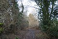 Footpath between Wood's Place and the railway - geograph.org.uk - 1724035.jpg