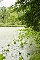 Forest Park, Springfield, MA 01108, USA - panoramio (41).jpg