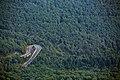 Forestry road.jpg
