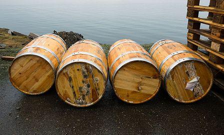 Four barrels by the sea.jpg