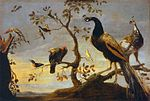 Frans Snyders - Group of Birds Perched on Branches - WGA21528.jpg