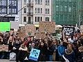 FridaysForFuture protest Berlin 22-03-2019 37.jpg
