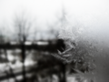 Frosted Window.png