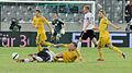 Fußballländerspiel Österreich-Ukraine (01.06.2012) 34.jpg