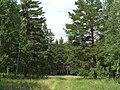 G. Miass, Chelyabinskaya oblast', Russia - panoramio (41).jpg
