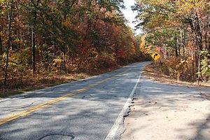 Georgia State Route 60 - Georgia State Route 60 in Lumpkin County