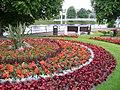 Gardens on Haugh Road - geograph.org.uk - 885426.jpg