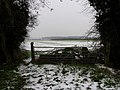 Gate and fields - geograph.org.uk - 352384.jpg