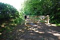 Gate at the beginning of a footpath near Fawkes Common - geograph.org.uk - 857545.jpg