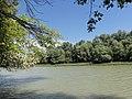 Gemenci erdő - Rezéti-Duna - 1419.jpg