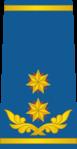 Georgia Air Force OF-8.png