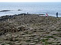 Giant's Causeway (4) - geograph.org.uk - 817046.jpg